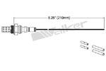 250-21000 Catalytic Converters Detail