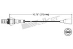 250-21013 Catalytic Converters Detail