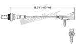 250-21028 Catalytic Converters Detail