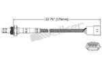 250-23126 Catalytic Converters Detail