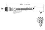 250-24013 Catalytic Converters Detail