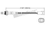 250-24388 Catalytic Converters Detail