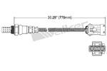 250-24409 Catalytic Converters Detail