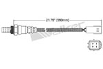 250-24447 Catalytic Converters Detail