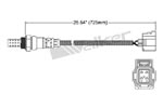 250-24752 Catalytic Converters Detail