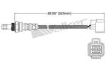 250-24913 Catalytic Converters Detail