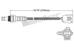 250-24943 Catalytic Converters Detail