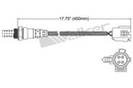 250-24946 Catalytic Converters Detail